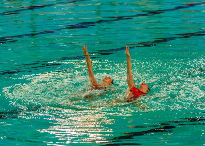 Exposición de la natación sincronizada foto de archivo libre de regalías
