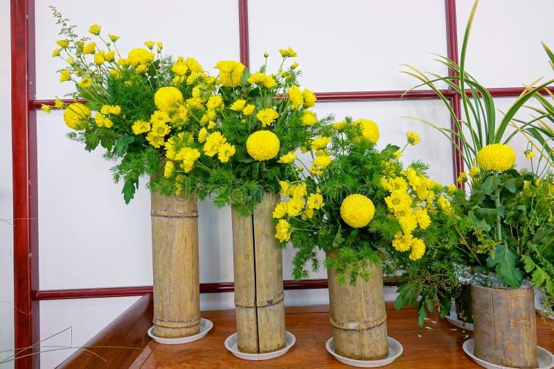 Exposición del crisantemo fotos de archivo libres de regalías