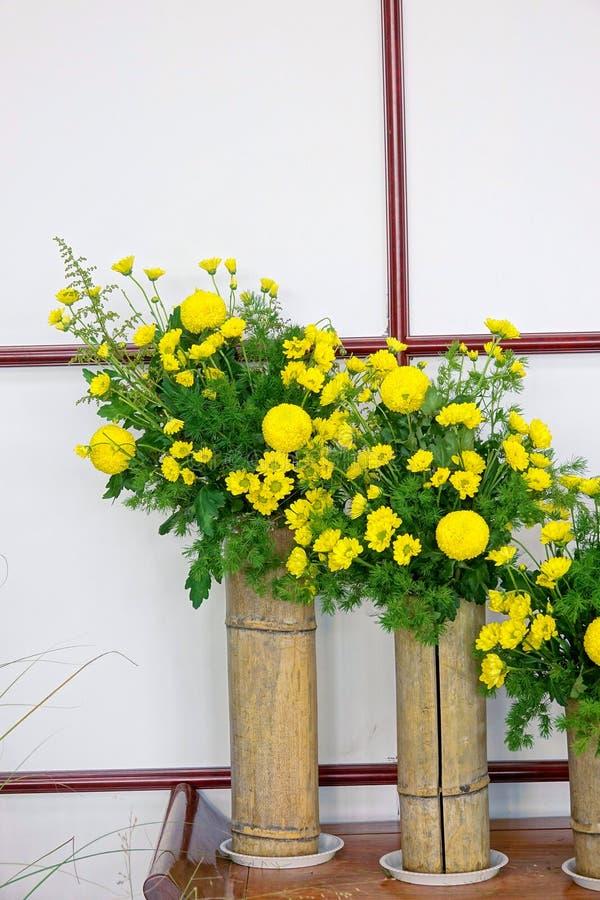Exposición del crisantemo fotografía de archivo