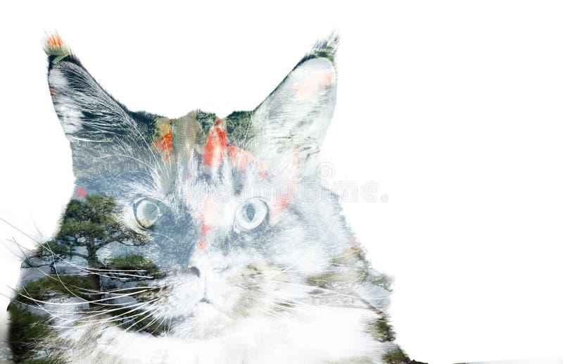 Exposición doble de un gato, de peces de colores y de árboles imagen de archivo libre de regalías
