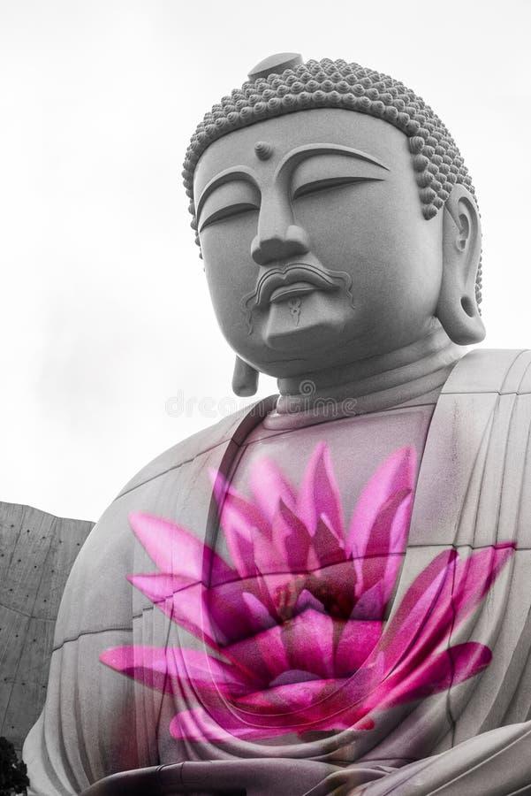 Exposiciones sobrepuestas o dobles de sentarse gigante y de la estatua pacífica de Buda dentro de la colina del Buda con un loto  fotografía de archivo libre de regalías
