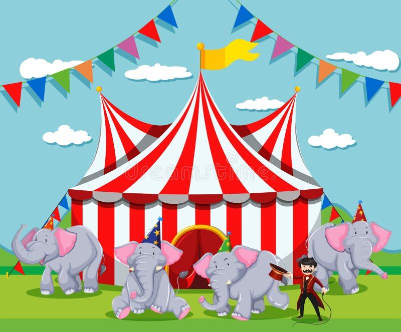 Exposition d'éléphant au cirque illustration de vecteur