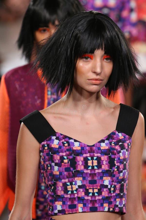 Exposition d'Alexandra Frida de finale de piste de promenade de modèles au printemps 2016 de FTL Moda photographie stock libre de droits