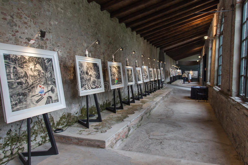 Download Exposition D'art Dans Palazzo Pfanner Lucques L'Italie L'europe Photo éditorial - Image du retrait, tuscany: 87700101