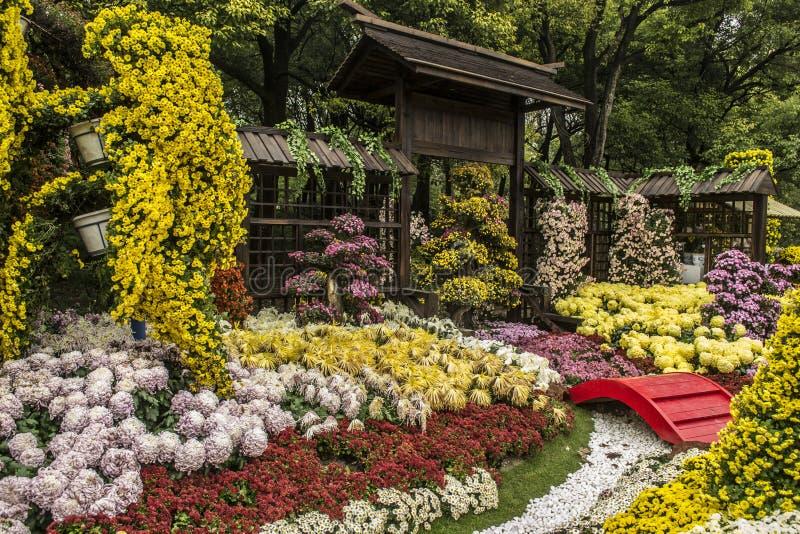 Exposition de chrysanthème de Changhaï photos stock