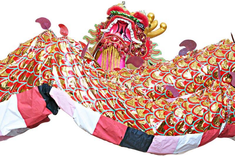 Exposition de dragon sur le fond blanc isolaeted photo stock