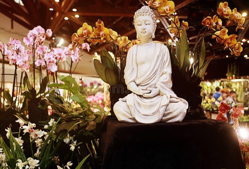 Exposition de fascination d'orchidées des orchidées exotiques dans Garching, Allemagne image stock