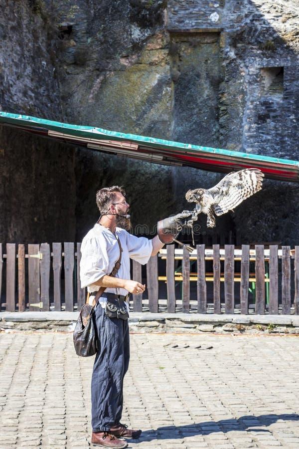 Exposition de fauconnerie au château du bouillon, Belgique images libres de droits