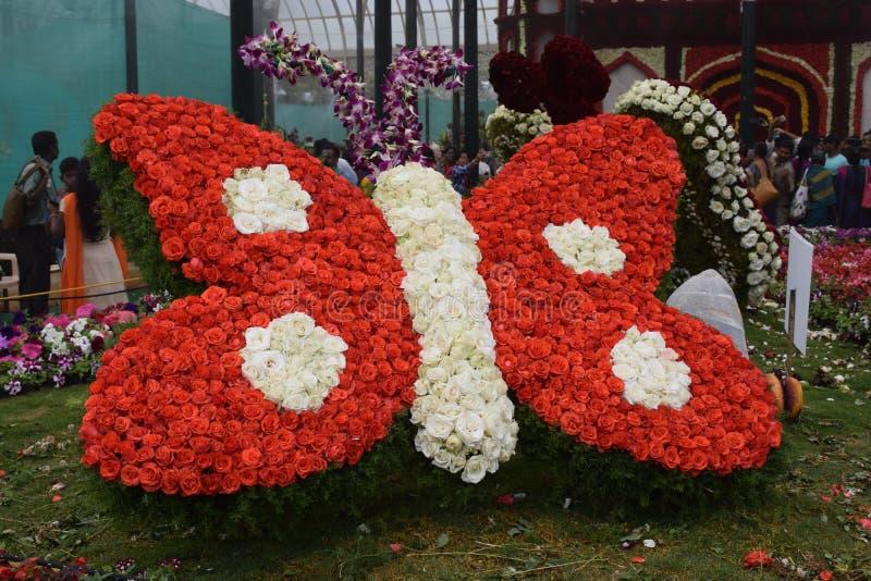 Exposition de fleurs image libre de droits