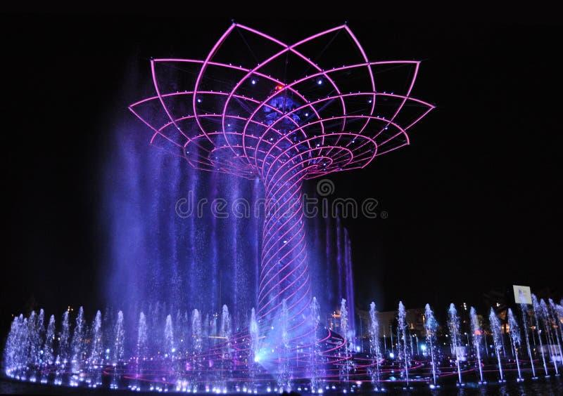 Exposition de l'eau de soirée autour de l'arbre de la vie photographie stock