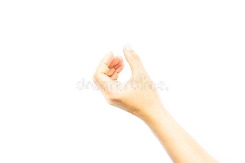 Exposition de main de femme jugeant quelque chose d'isolement sur le fond blanc photo libre de droits