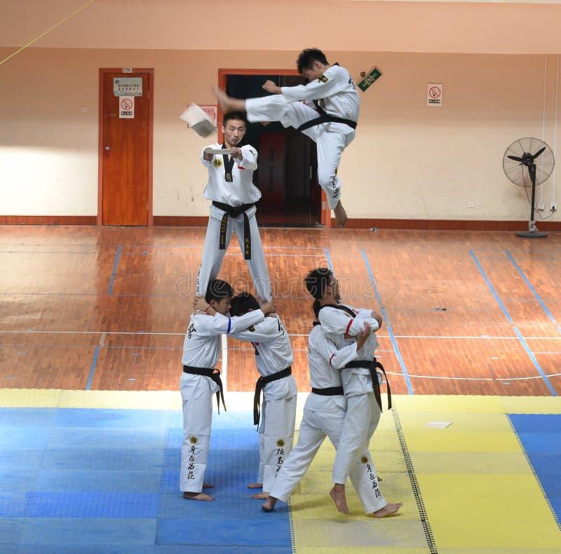 Exposition splendide des concurrents avec la ceinture noire --La concurrence amicale du Taekwondo de septième tasse de GoldenTeam images libres de droits