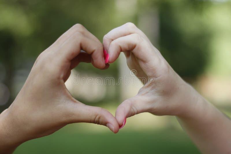 Expressão da mão do coração fotografia de stock royalty free