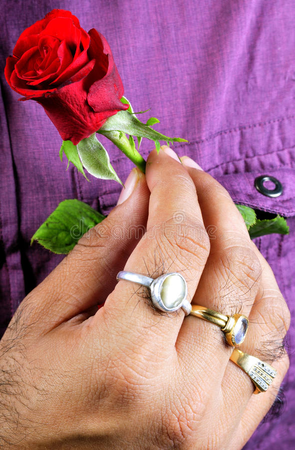 Download Expressing love stock photo. Image of natural, hand, petal - 11719654