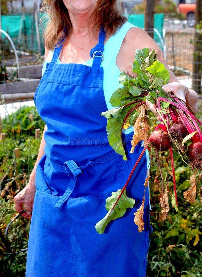 Expressions femelles de jardinier images stock