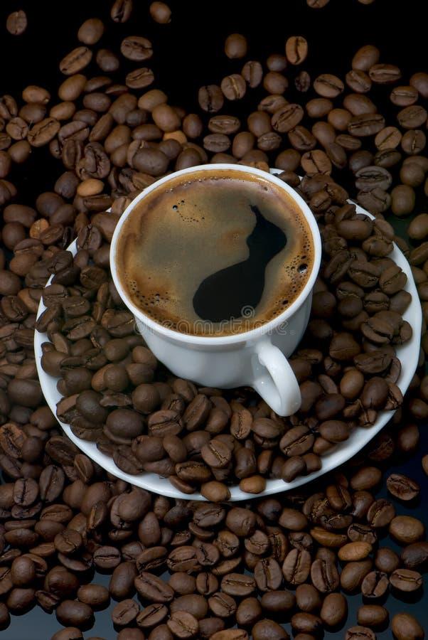 Download Expresso stock photo. Image of gains, dark, caffeine, brazil - 4365330
