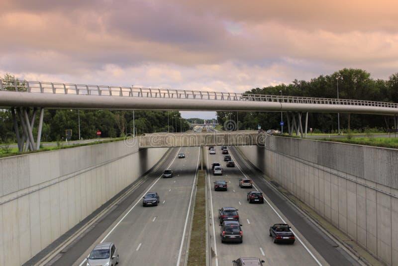 Expresweg motorway Bruges Belgien royaltyfri bild