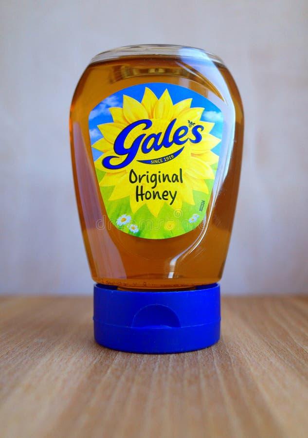 Exprima la botella de miel de la original del ` s del vendaval imagen de archivo