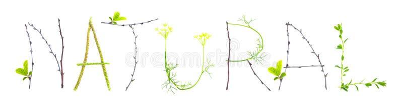 Exprima natural feito do isolado das folhas e dos galhos imagem de stock royalty free