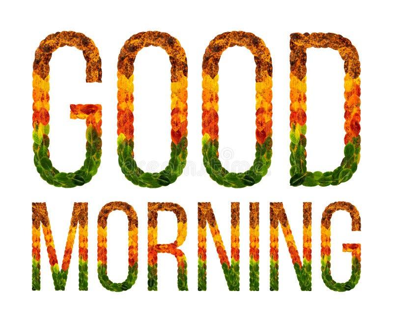 Exprima o bom dia escrito com fundo isolado branco das folhas, bandeira para imprimir, ilustração criativa do colorido ilustração stock