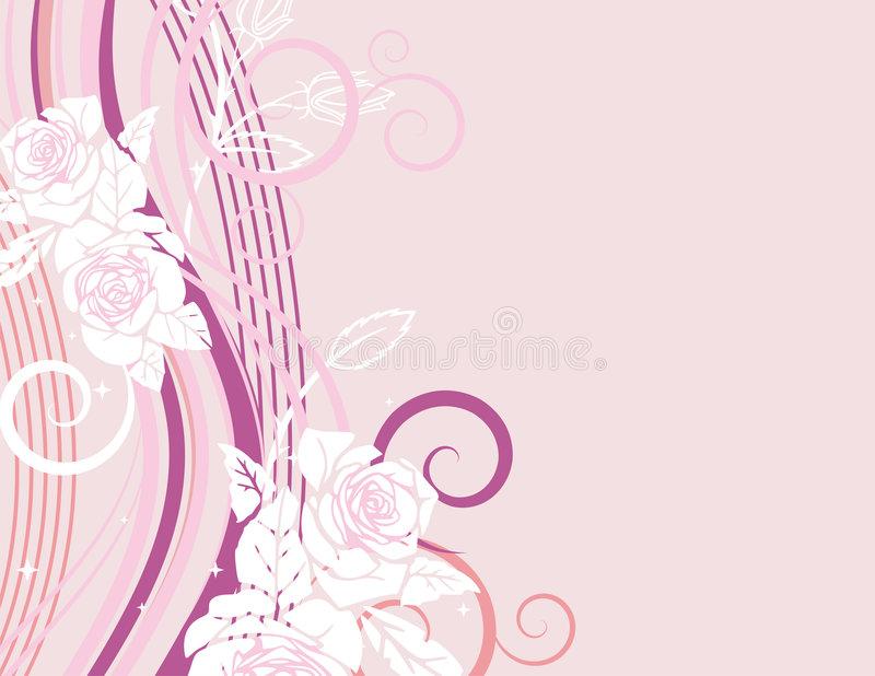 Exquisite rose series. Exquisite wedding concept design with white roses and rose buds stock illustration