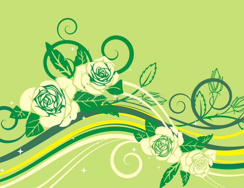 Exquisite rose series. Exquisite floral background with white roses, rose buds and scroll elements. May be used for wedding related designs vector illustration