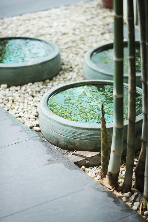 Extérieur tropical asiatique contemporain de conception de jardin photographie stock libre de droits