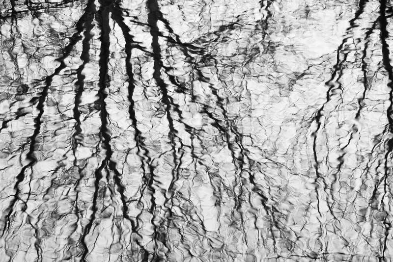 Extas av reflexionsdel 1. royaltyfria foton
