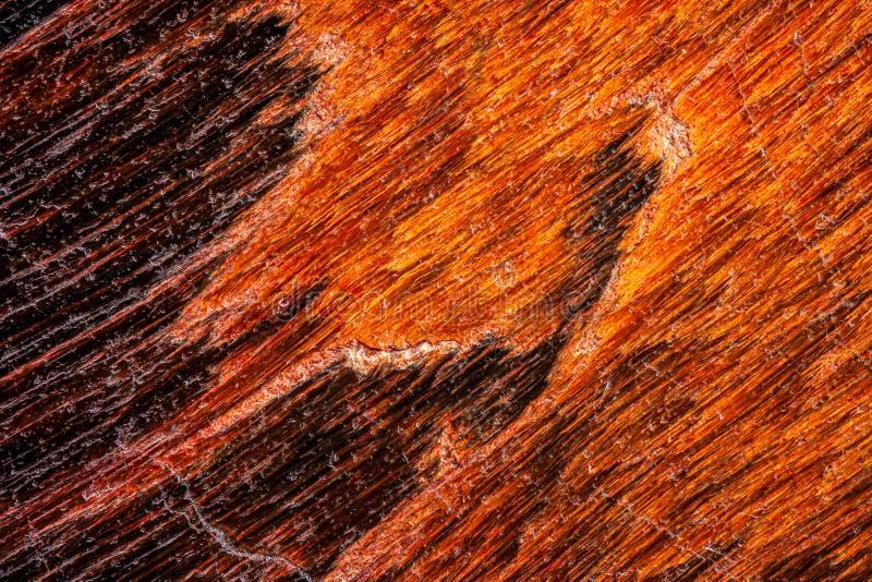 Exteme Makro einer Leopardskin Jasper-Oberfläche stockfoto