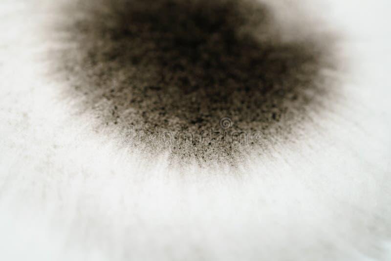Extensión de la esquina de la tinta negra del primer en la opinión de ángulo de papel mojada imagen de archivo