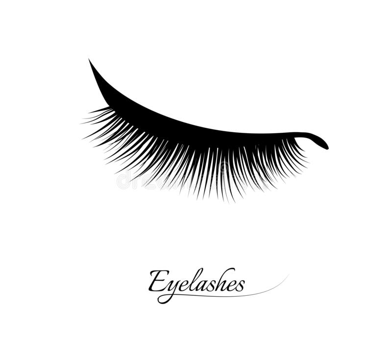 Extensión de la pestaña Pestañas largas negras hermosas Ojo cerrado Cilios falsos de la belleza Efecto natural del rimel Encanto  libre illustration
