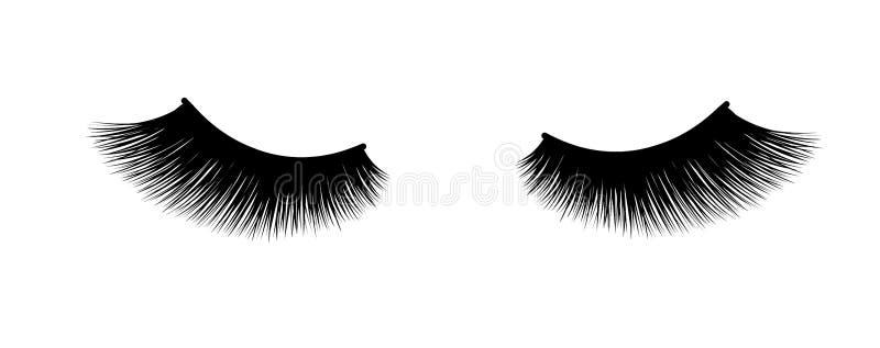 Extensión de la pestaña Un maquillaje hermoso Cilios borrosos gruesos Rimel para el volumen y la longitud stock de ilustración