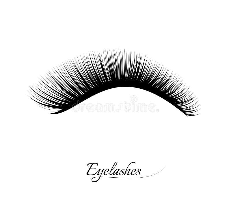 Extension de cil Beaux longs cils noirs Cils faux de beauté Effet naturel de mascara Charme professionnel illustration stock