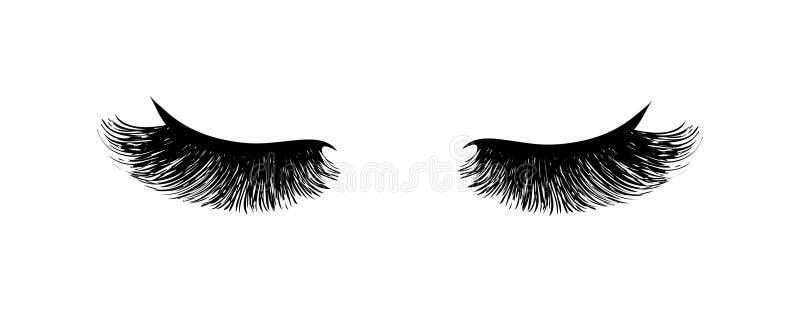 Extension de cil Beaux longs cils noirs Oeil fermé Cils faux de beauté Effet naturel de mascara Charme professionnel illustration stock