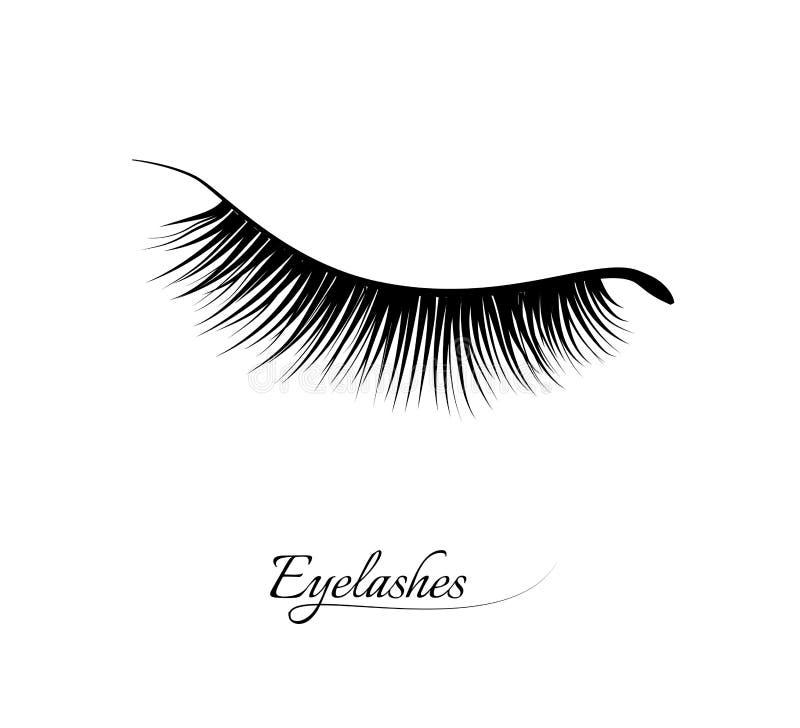 Extension de cil Beaux longs cils noirs Oeil fermé Cils faux de beauté Effet naturel de mascara professionnel illustration stock