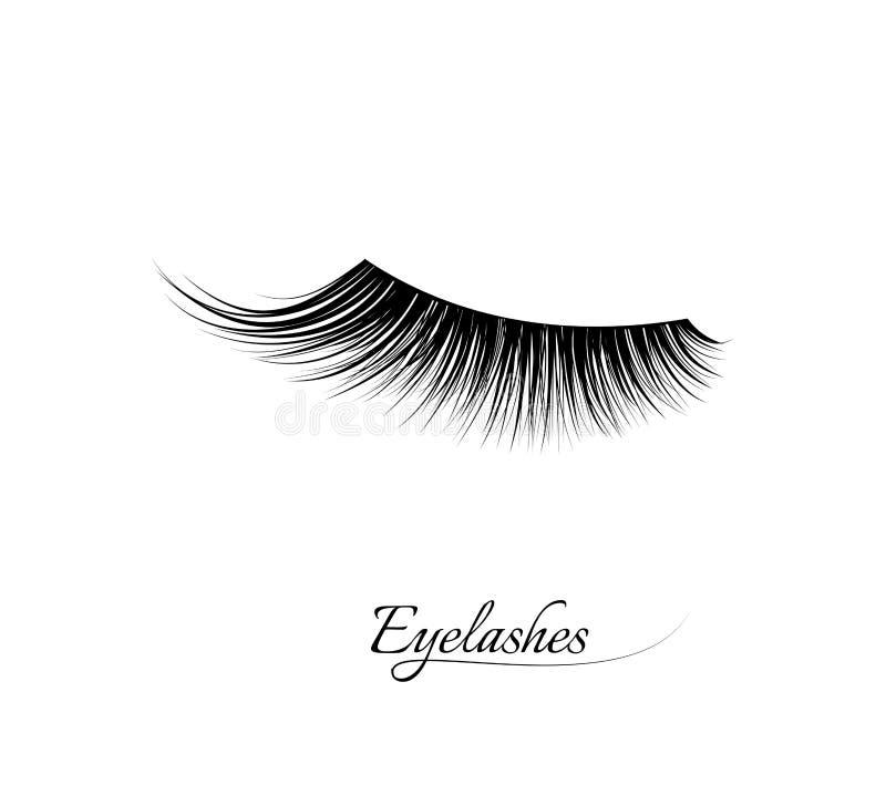 Extension de cil Beaux longs cils noirs Oeil fermé Cils faux de beauté Effet naturel de mascara professionnel illustration de vecteur