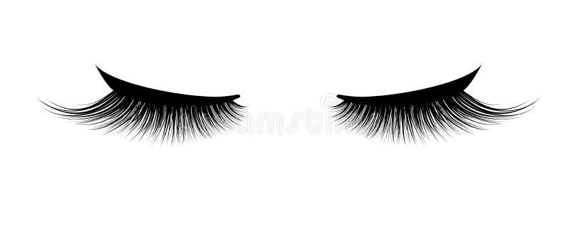 Extension de cil Un beau maquillage Cils épais Mascara pour le volume et la longueur illustration libre de droits