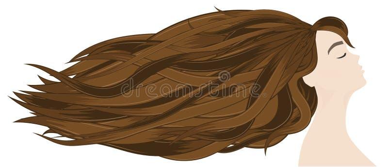 Extensiones del pelo en el salón profesional Perfil de la morenita hermosa con los pelos largos stock de ilustración