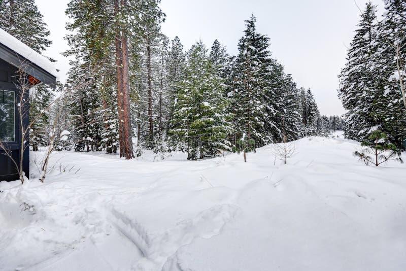 Exterior da casa moderna com paisagem do inverno imagem de stock