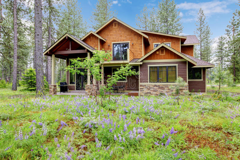 Exterior da HOME da cabine da montanha imagem de stock royalty free