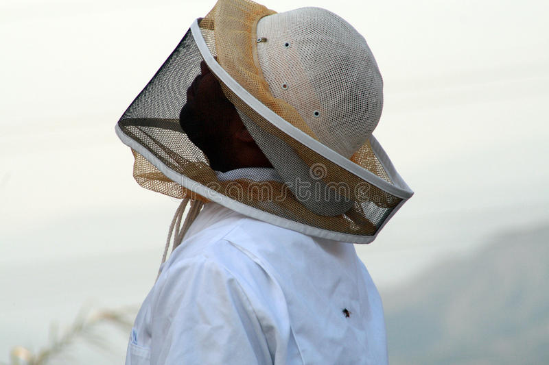 Download Exterminator stock photo. Image of danger, mask, protective - 20437270
