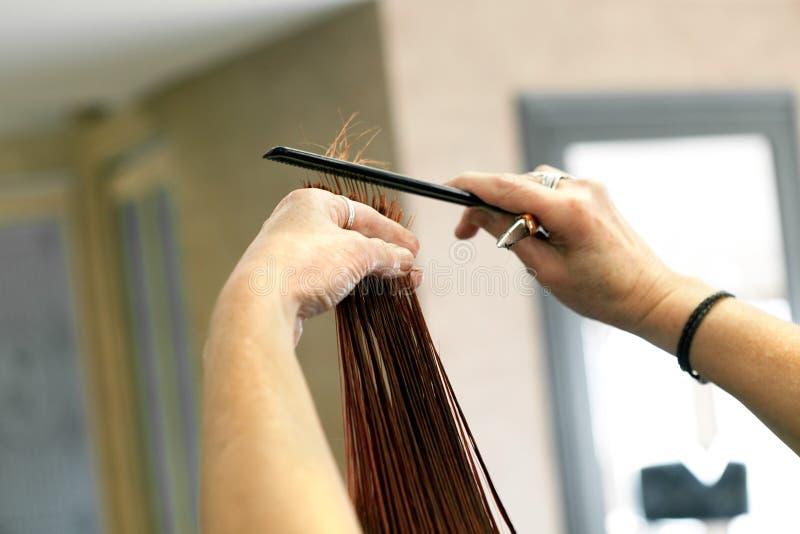 Extrémités de cheveux de coupe de coiffeur photo libre de droits