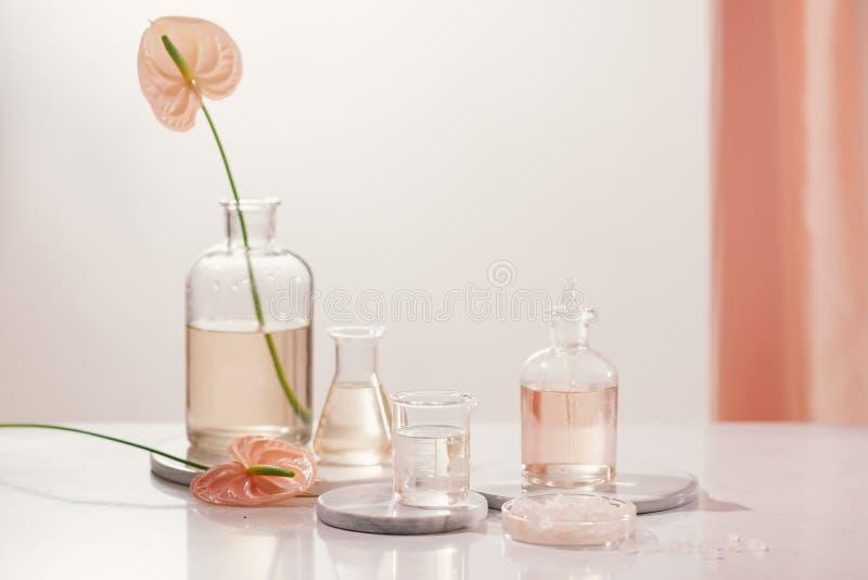 Extracci?n org?nica natural, soluci?n de la esencia del aroma de la flor en laboratorio foto de archivo