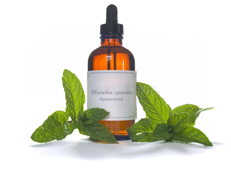 Extraction de menthe verte ou huile essentielle photo stock