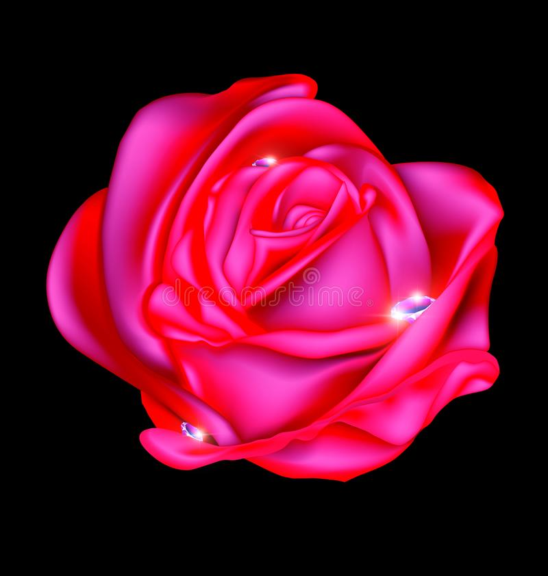 Extracto color de rosa y gemas stock de ilustración