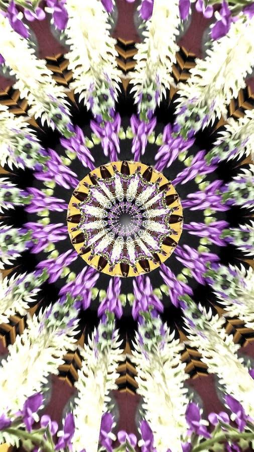 Extracto de la bandera de Kalaidoscope de una flor imagen de archivo
