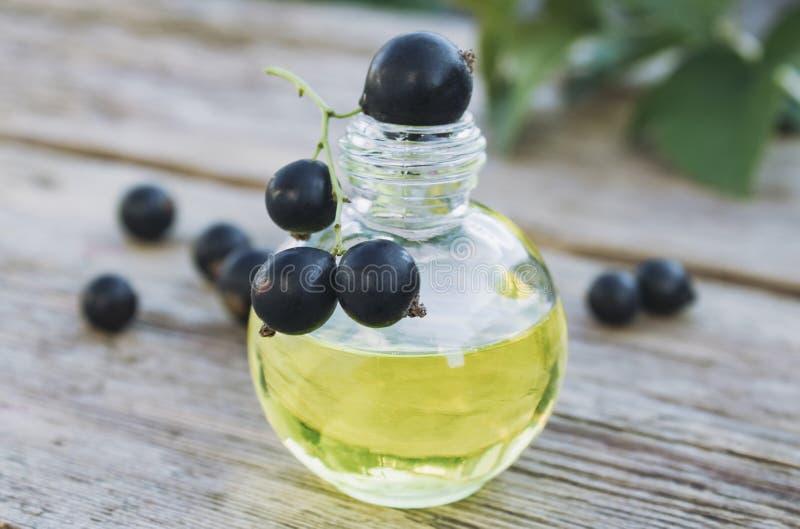 Extracto de la grosella negra en una botella de cristal Tinte medicinal con la grosella negra imagen de archivo libre de regalías