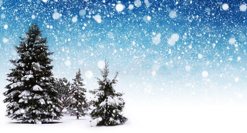 Extracto de la nieve del invierno foto de archivo libre de regalías