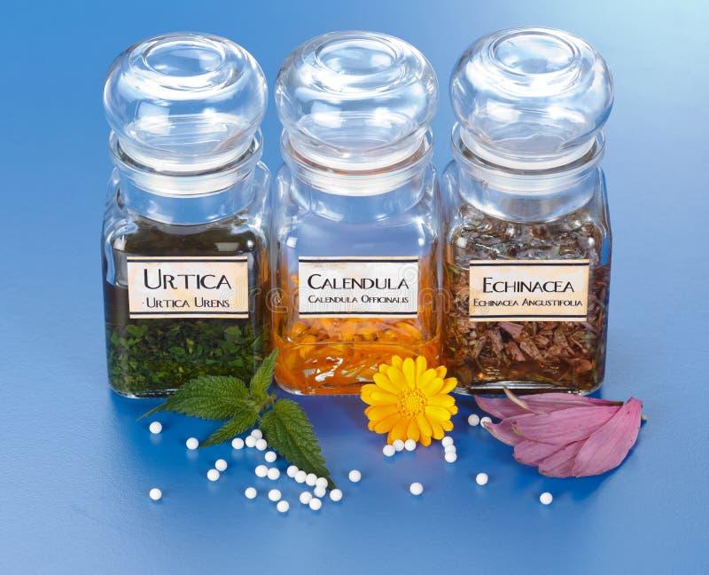 Extracto de la planta en botellas y gránulos homeopáticos fotografía de archivo libre de regalías