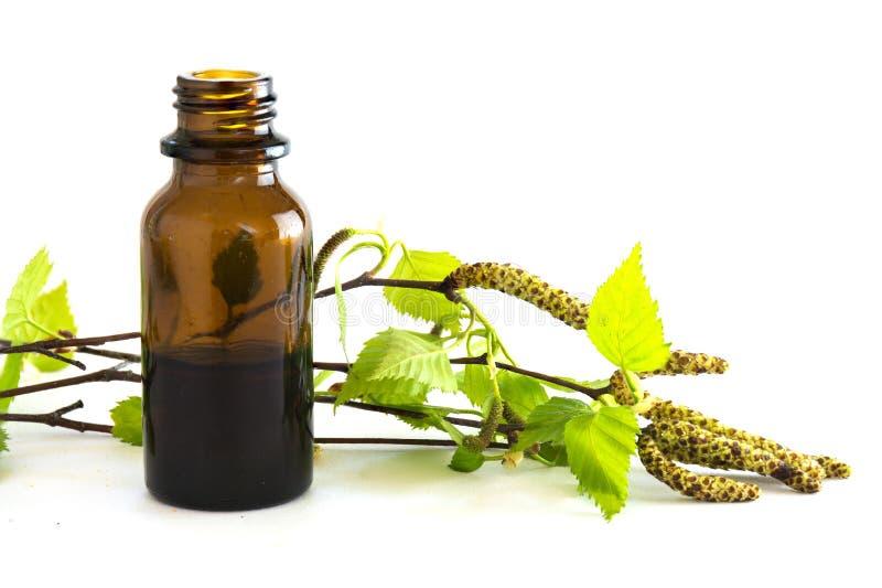 Extracto del abedul en una pequeña botella y ramas con las hojas frescas i imagen de archivo